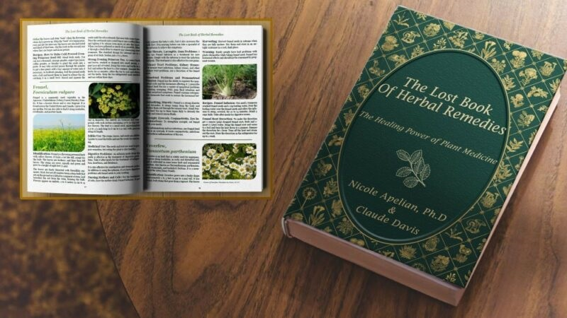 Learning Herbal Remedy Basics All from The book of herb