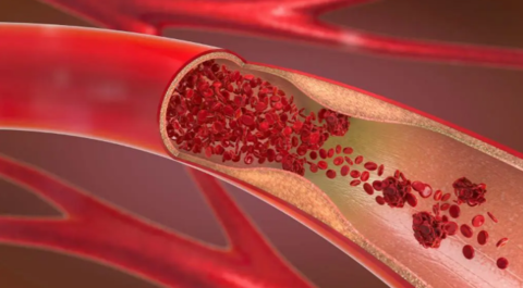 Guardian Botanicals Blood Balance Pills Reviews