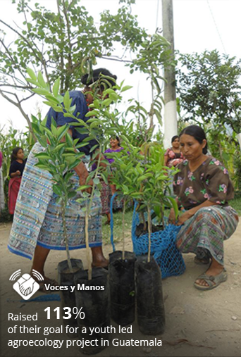 Saving-Our-Soil--Youth-led-Agroecology-Project-In-Guatemala